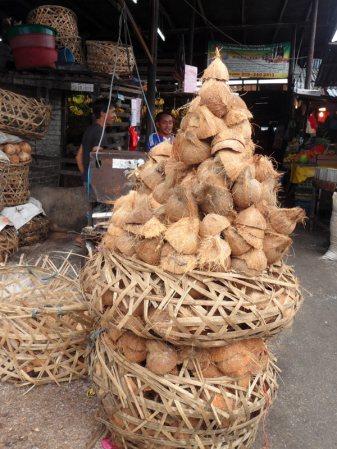 Zużyte kokosy - zdjęcia z podróży po Malezji