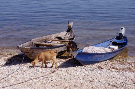Wczasy nad jeziorem w Czarnogórze