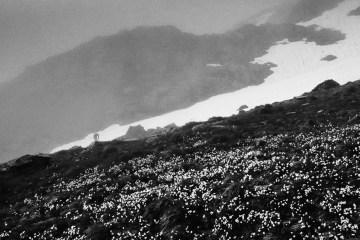 Pireneje - zdjęcia Katarzyny Nizinkiewicz