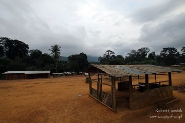Zdjęcia z podrózy do Gabonu