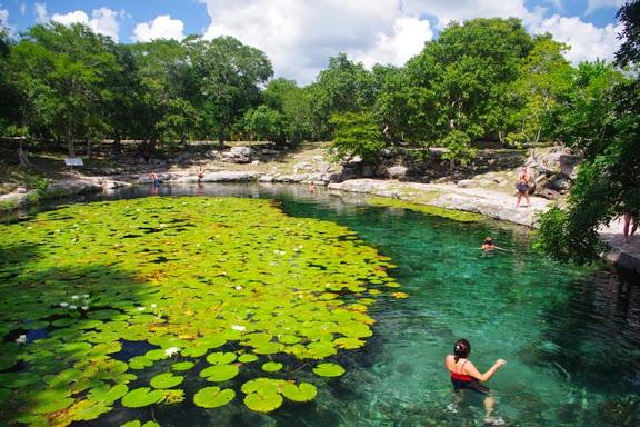 Wolontariat na Jukatanie?