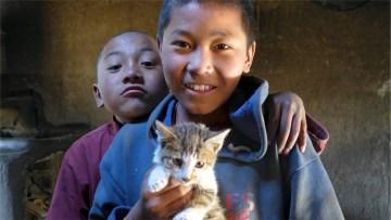 Zdjęcia z Nepalu - dzieci i kotek