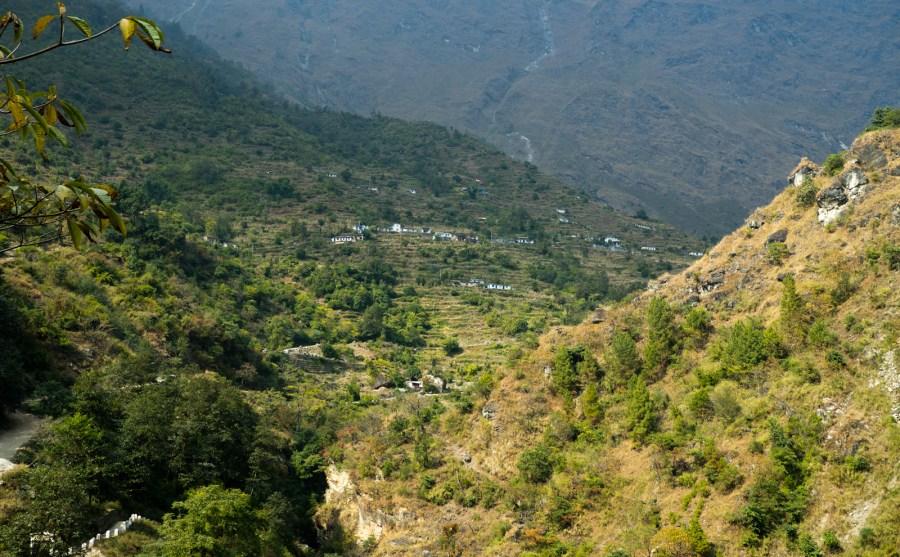 Podnóża Himalajów porasta dżungla.