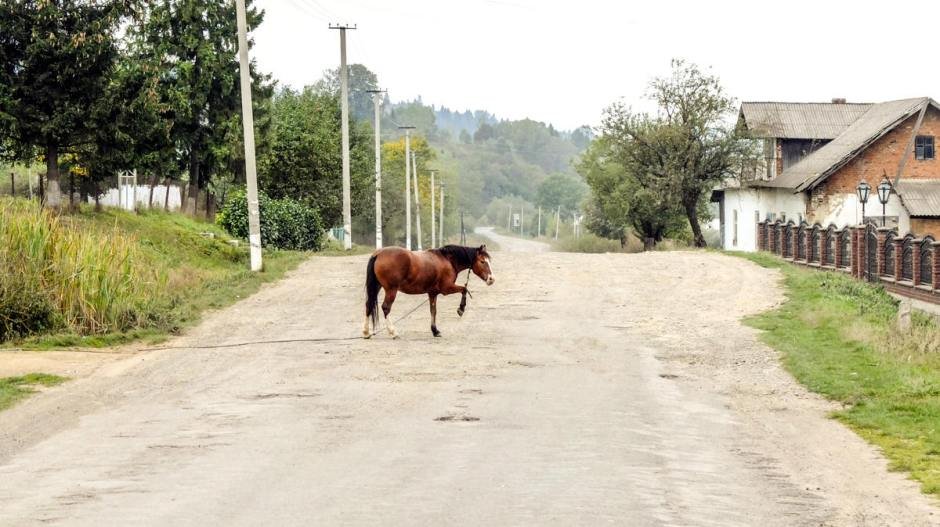 Wieś w Karpatach Wschodnich na Ukrainie