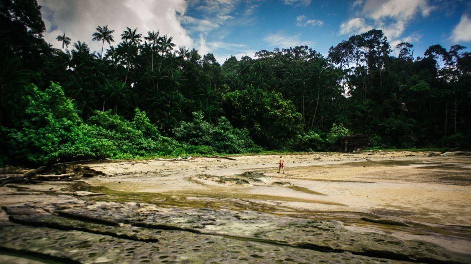 Park Bako w malezyjskiej części Borneo