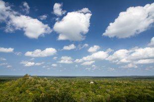 Starożytne miasto Calakmul ukryte w meksykańskiej dżungli