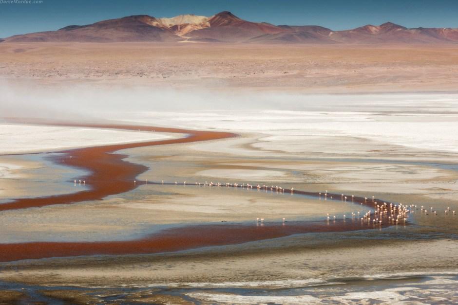 Boliwia, solna pustynia, flamingi, foto