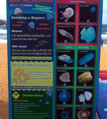 Malta, meduzy, tablica informacyjna