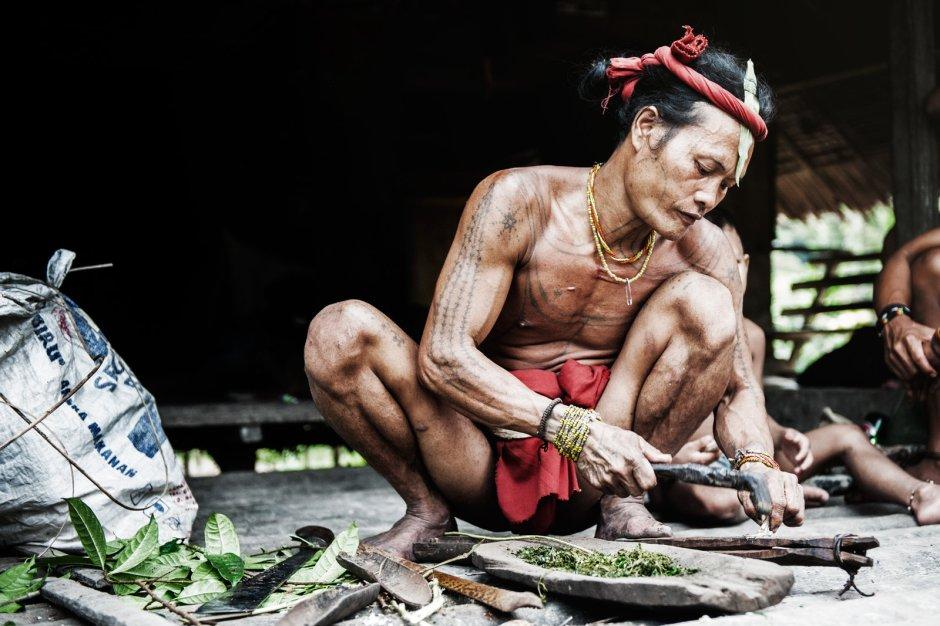Indonezja, Mentawaje. Szaman Aman Tople, przygotowanie zatrutych strzał do polowania
