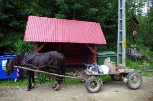 Rumunia rowerem - relacja i zdjęcia