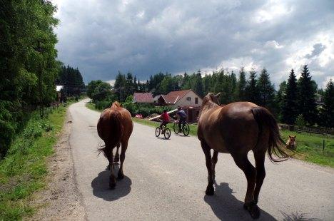 Rumunia rowerem - relacja z drogi