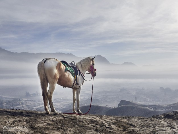 Podróż do Indonezji, wycieczka nad wulkany Bromo