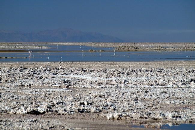 Chile, Salar de Atacama, solnisko Atakama