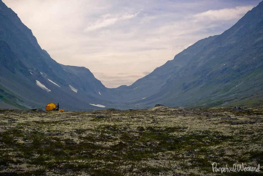 Reindeer lichen VE-25 North Face Tent