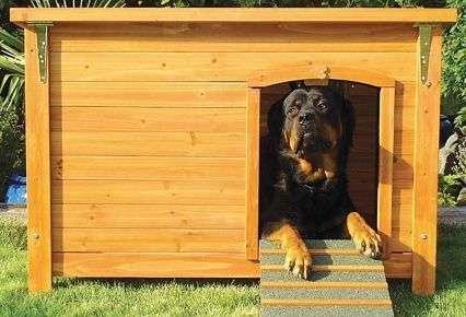 Casas para perros de diferentes materiales articulos de for Casas para perros