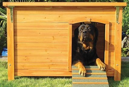 Casas para perros de diferentes materiales articulos de - Como hacer una casa para perro grande ...