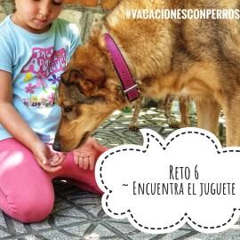 Reto 6 Encuentra el juguete #vacacionesconperrosyniños