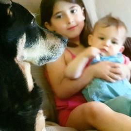 6 tips para la perfecta convivencia entre niños y perros
