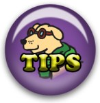 Consejos del perro viajante