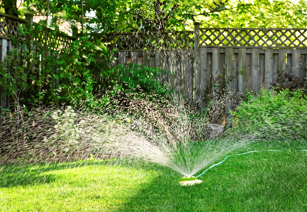 How To Keep Your Lawn Healthy While Conserving Water