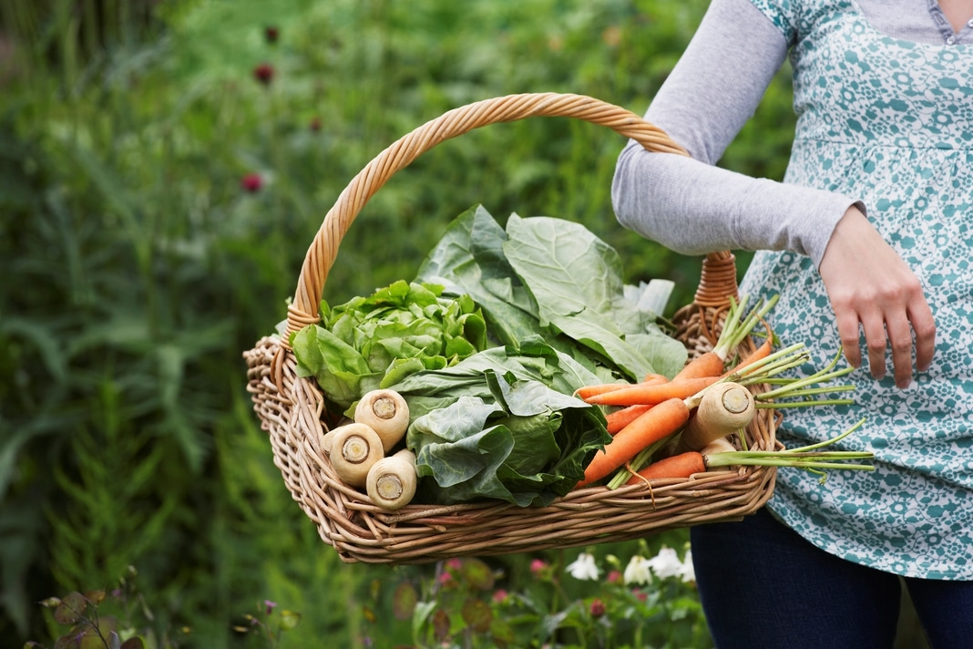 person carrying vegetable basket