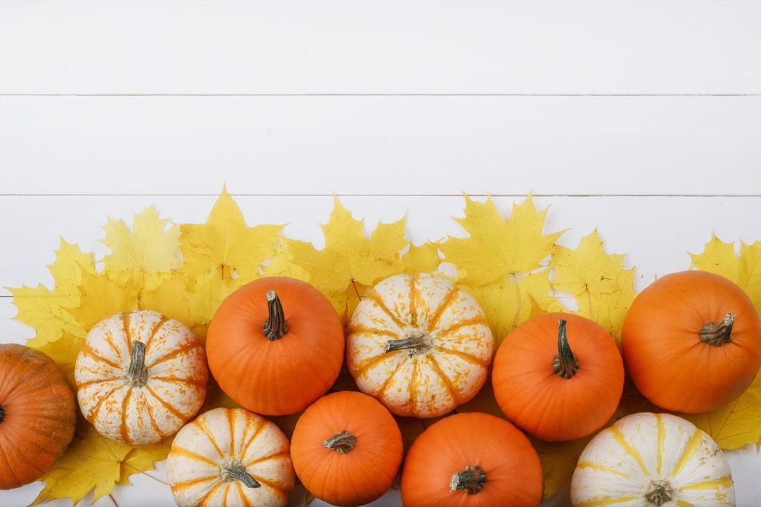 Family Friendly October Fun In Utah