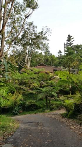 Gunung hijau rest house at Bukit Larut