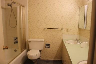Before Provo bathroom