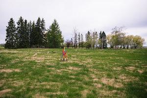 Field Gaze