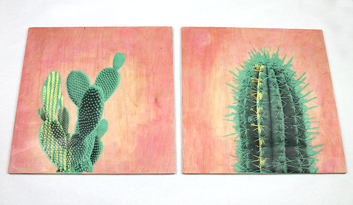 make your own photo transfer cactus art