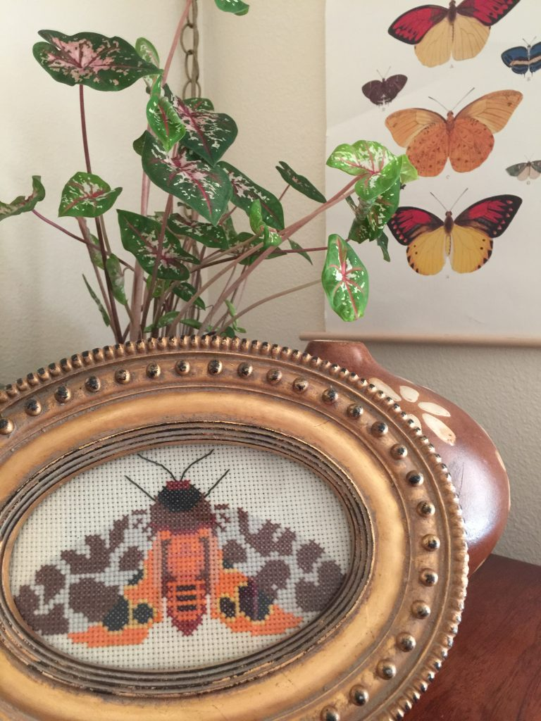 cross stitch project framed moth