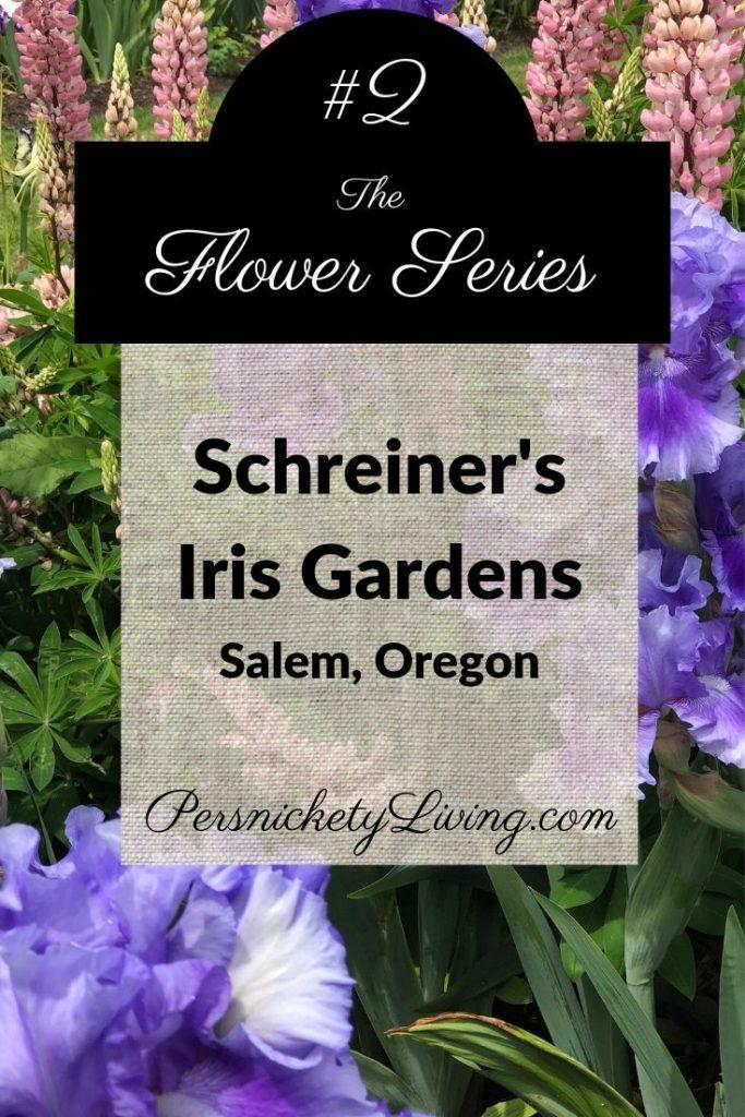 Flower Series 2: Schreiner's Iris Gardens