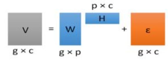 Figure 1 Matrix decomposition using NMF. Matrix V is decomposed into W and H. g denotes demographic groups in the dataset, c denotes product units, p is the number of latent behaviors of demographic groups over product units, and ε is the error term.