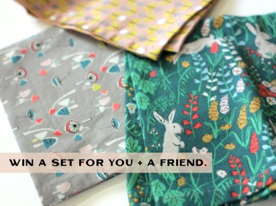 Cloth Napkin Giveaway