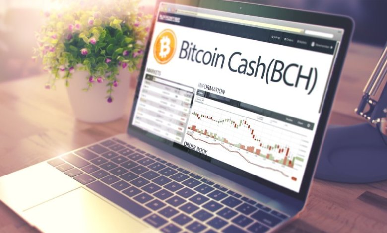 Photo of The Long Sinking of Bitcoin Cash (BCH) – Cryptocurrencies