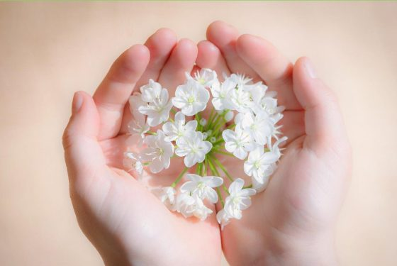 flower-1307578_1920 copia