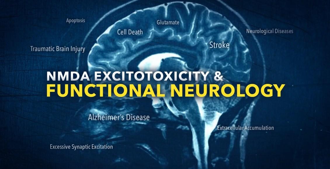 NMDA Excitotoxicidad en Neurología Funcional | El Paso, TX Quiropráctico