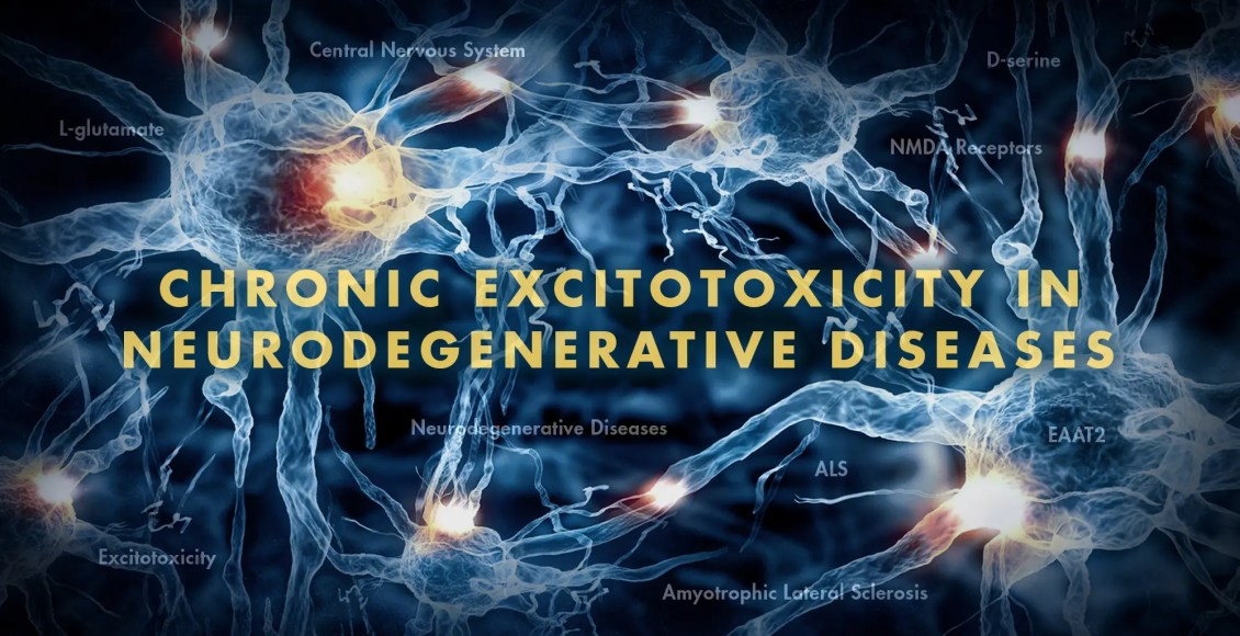 Functional Neurology: Chronic Excitotoxicity in Neurodegenerative Diseases | El Paso, TX Chiropractor