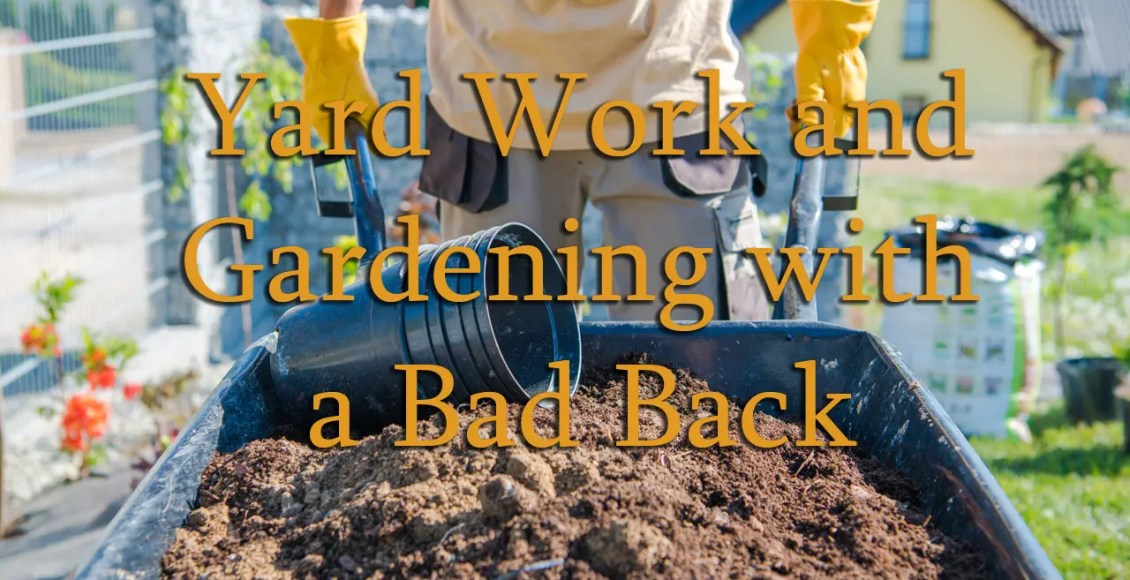 11860 Vista Del Sol, Ste. 128 Yard Work and Gardening With a Bad Back El Paso Texas