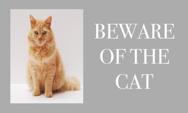 Beware Of The ... Personalised Photo Doormat