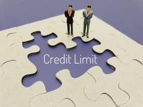 What Kinds of Credit Limits Do Authorized User Tradelines Have?