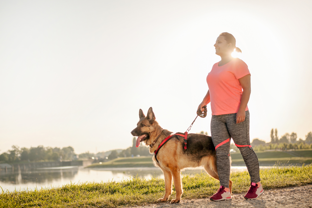 Find and track any walk you want with the AllTrails app; it can even help you lose weight as you get your Personal Trainer Food steps in when you walk the dog!