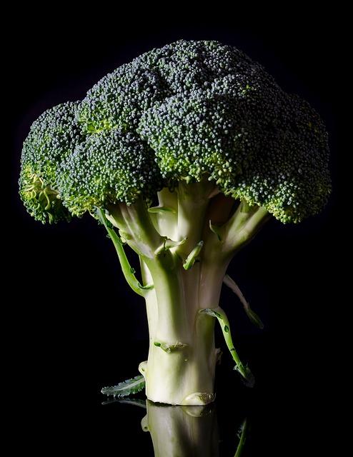 Ovenschotel met broccoli en witlof