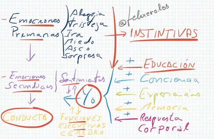 Emociones y Educación