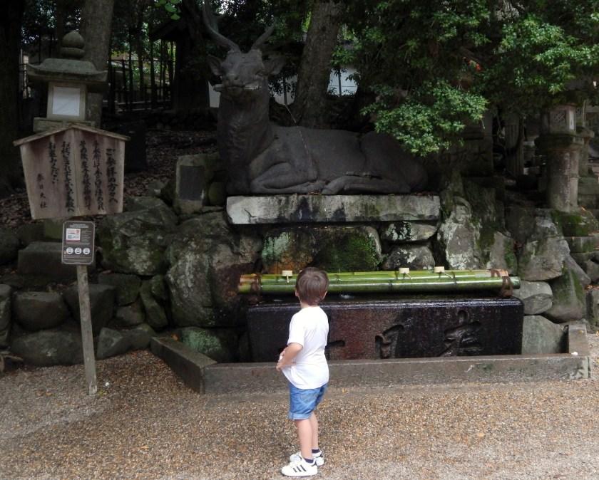 Giappone con bambini: Nara