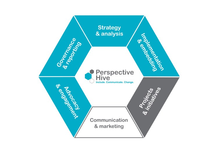 Graphic of Perspective Hive's services in a hexagon shape