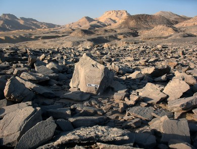 The grinding stone quarry by the north scarp: a work area lined with broken slabs. Scale is 15 cm long. Photo: Per Storemyr