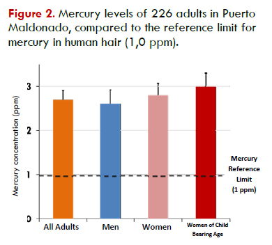 More than three out of four adults analyzed in Puerto Maldonado had mercury concentrations higher than the reference limit.