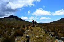 El gran camino Inca.