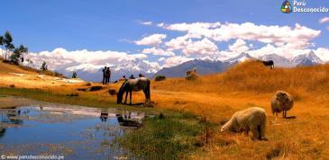 Hermosa vista de la Laguna Wilcacocha